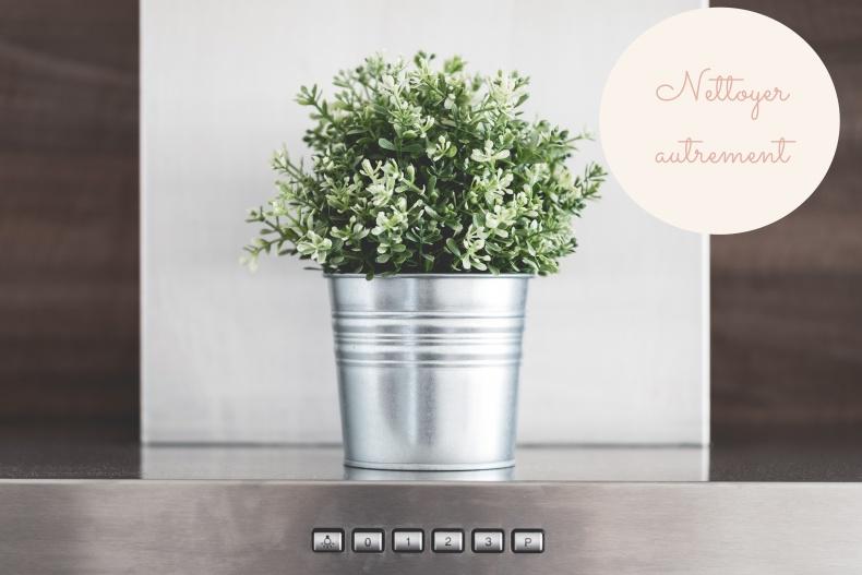 kitchen-decoration-green-flower-in-metallic-flowerpot-picjumbo-com.jpg