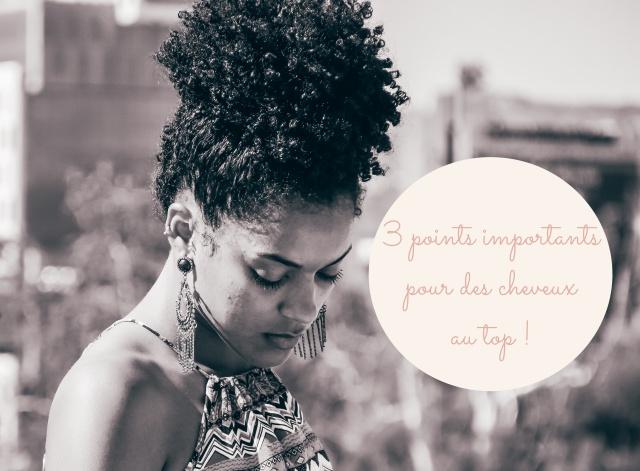 fondamentaux pour cheveux afros en bonne santé.jpg